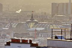 127 Paris Janvier 2020 - les toits de Paris depuis la Butte Montmartre, le Grand Palais (paspog) Tags: paris france montmartre butte buttemontmartre toits roofs dächer roofsofparis toitsdeparis janvier januar january 2020 grandpalais