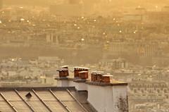 128 Paris Janvier 2020 - les toits de Paris depuis la Butte Montmartre, les piles du Pont Alexandre III (paspog) Tags: paris france montmartre butte buttemontmartre toits roofs dächer roofsofparis toitsdeparis janvier januar january 2020