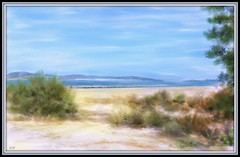 Shoreline of Barnegat Bay (edenseekr) Tags: shoreline ocean bay peninsula photopainting