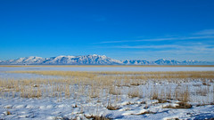 Wasatch front (phl_with_a_camera1) Tags: bear river migratory bird refuge utah