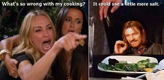 What's so wrong with my cooking? (Cui Bono) Tags: woman cat meme taylor armstrong real housewives beverly hills tolkien lord rings boromir sean bean rivendell simply walk mordor film movie television tv angry