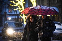 snow (nycmayorsoffice) Tags: snow weather umbrella night newyork ny usa