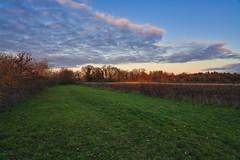 Angestrahlt von der Sonne (KaAuenwasser) Tags: angestrahlt strahlen sonne licht schatten sonnenuntergang wald natur baum bäume feld felder acker wiese himmel wolken farbe farben winter januar 2020