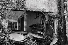 Ma Wan, Hong Kong (a.pierre4840) Tags: olympus om3 zuiko 55mm f12 35mmfilm kodak kodaktmax400 abandoned decay derelict ruined hongkong dof depthoffield