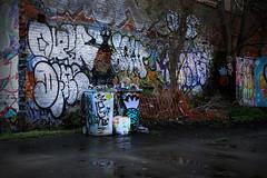 Graffiti [18/366 2020] (_ _skdotcom_ _) Tags: anglia square norwich photowalk graffiti wheelie bin puddle