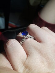 Engagement Ring - The Garnet (hyprsleepy) Tags: engagement ring diamond ruby sapphire custom
