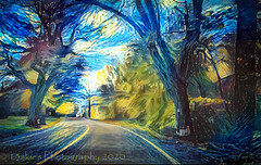 The Road (HSS) (13skies) Tags: happyslidersunday post postprocessing slider road countryroad painterly paintedlook processing effect software attraction2abstraction abstract colours trees curve
