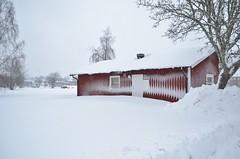 Februari 2019. (johnerlandaxelsson@gmail.com) Tags: gimo uppland sverige vinter natur landskap landscape johnaxelsson