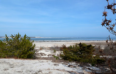 Shoreline of Barnegat Bay (edenseekr) Tags: shoreline ocean bay peninsula