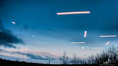 2020-01-18 15.39.39 - Skylight, Spejling-Refleksion, Dag 18-366, Uge 3, Sdr. Borup, Randers - _DSC9790 - ©Anders Gisle Larsson