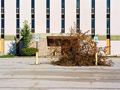 149673RLma011008-R1-003 (elsuperbob) Tags: livonia michigan abandoned emptyspaces newtopographics forgotten detroit modernism badarchitecture suburbia mamiyam645 kodak ektar100 kodakektar