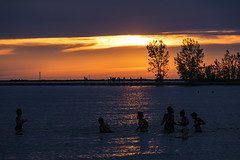 last swim as the sun sets in Muskegon (TAC.Photography) Tags: lakemichigan sunset silhouette d7500 2019yip