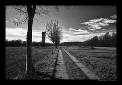 GRENZLAND (herbert thomas hesse) Tags: hth grenze grenzland sw bw monochrome weg kolonnenweg grenzlinie borderline border deutschland