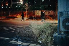 2251/1738 (june1777) Tags: snap street alley seoul night light bokeh sony a7ii industar 502 50mm f35 russian m42 12800 clear idae vin2
