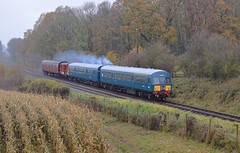 BR blue DMU power twin set, with a Van & BG, the 11.14 off Swithland to Rothley. Great Central Railway Last Hurrah. 17 11 2019 (pnb511) Tags: greatcentralrailway trains railway dieselmultipleunit class101 road bridge trees diesel gala gcr track train dmu