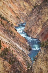 Water falls and river of Grand Canyon of the Yellowstone (jack-sooksan) Tags: grandcanyon canyon yellowstone mountain hill slope nature park wyoming usa america forest jungle wood woods wildness deep high landscape river water falls flow mount stream watercourse waterfall unitedstates