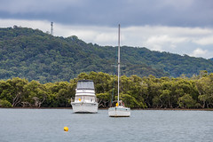 Rain Clouds and Boats on the Bay (Merrillie) Tags: woywoy landscape nature water overcast foreshore newsouthwales clouds cloudy nsw brisbanewater mangroves daytime australia bay sky coastal afternoon outdoors waterscape rain centralcoast rainyday mountain