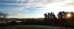 The garden:  January ... morning has broken (ronmcbride66) Tags: panorama codown dawn sunrise garden thegarden beech shrubs landscape drumlins lake trees woodland acer conifers skimmia