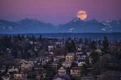 """La Luna"" (TIA International Photography) Tags: supermoon super moon worm march 2019 seattle washington state cascade mountains cascades mountain range evening sunset moonrise luna lune satellite queenanne neighborhood houses homes hill snow belinda carlisle song laluna tosinarasi ©tiainternationalphotography pacificnorthwest pugetsound urban landscape natural extraterrestrial otherworldly single martinlutherking jr day mlk weekend kingcounty government council rising peak sphere lavender"
