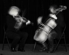 Duet Rehearsal (issaccello) Tags: music chambermusic rehearsal art violin cello duet