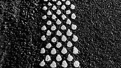 Fahrbahnmarkierung (der Randstreifen) (dl1ydn) Tags: dl1ydn fahrbahnmarkierung strase road marking seitenstreifen manualfocus nahaufnahmen vintagelens closeup agfa solinar 75mmf35 bw whitespots