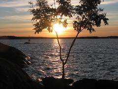Skärgårdsbild (greger.ravik) Tags: fiske fiska fisketur ö fisketripp grabbarna resarö kväll solnedgång skärgård boj hav solglasögon