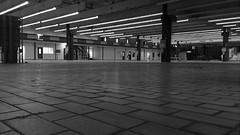 Industrieel Erfgoed Zwolle (2)..... B&W (wilma HW61) Tags: industrieelerfgoed zwolle condensatorfabriek philips bw monochrome blackandwhite zwartwit overijssel fabriekshal factory factoryhall halldusine saladellefabbriche fabbrica usine urban urbano verval decadimento pov standpunt compositie composition licht light nederland niederlande netherlands motorolamotog3 motog3 smartphone indoor wilmahw61 wilmawesterhoud capacitorfactory usinedecondensateur fabbricadicondensatori urbex ue urbanexploring