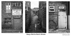 Photo of Bung a Bob for Boris's Britain