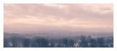 Glasgow (1 of 1)-3 (ianmiddleton1) Tags: glasgow mosspark icm movement panorama winter hss sliderssunday
