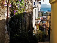Walking up to Vomero (fotoflo86) Tags: naples napoli neapel italien italy italia city urban gulf golfo sea mare sorrento sorrent steep scosceso fiori flower