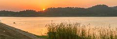 _MG_9797-99.0412.Hồ Đồng Quan.Sóc Sơn.Hà Nội (hoanglongphoto) Tags: landscape sunset sun sky lake dongquanlake water canon canoneos1dsmarkiii vietnam hànội sócsơn hồ hồđồngquan phongcảnh cảnhquan ngoàitrời thiênnhiên hoànghôn bầutrời mặttrời mặtnước nước carlzeissdistagont235ze redsky bầutrờimàuđỏ asia asian northvietnam northernvietnam naturelandscape naturallandscapes hill dãyđồi ridge hillside sườnđồi phongcảnhthiênnhiên theforest forest rừng hanoicapital thủđôhànội hoanglongphoto waterscapes cảnhquannước nature panorama 1x3 people landscapeandpeople peopleinnature phongcảnhcóngười ngườitrongthiênnhiên