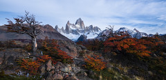 Presentation (Maddog Murph) Tags: fitz roy el chalten argentina mountain landscape fall autumn folliage nature tree glacier spectacular
