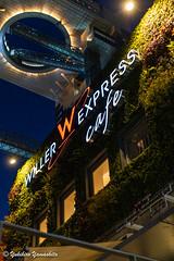 Osaka at night (yukky89_yamashita) Tags: 大阪 新梅田シティ osaka japan willerexpresscafe cafe night view shinumeda 梅田スカイビル