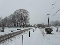 20200119_111530 (Győrsövényház) Tags: győrsövényház gyorsovenyhaz hó ho snow schnee havazás havazas