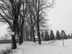 20200119_111626 (Győrsövényház) Tags: győrsövényház gyorsovenyhaz hó ho snow schnee havazás havazas