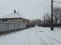 20200119_113957 (Győrsövényház) Tags: győrsövényház gyorsovenyhaz hó ho snow schnee havazás havazas