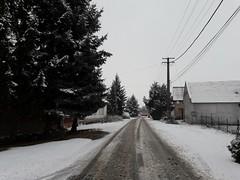 20200119_114434 (Győrsövényház) Tags: győrsövényház gyorsovenyhaz hó ho snow schnee havazás havazas