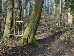 Statisch (Merodema) Tags: wordaround pad bos wood gate hek vast ingegroeidpad path