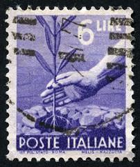REPUBBLICA ITALIANA 6 LIRE (Renato Morselli) Tags: stamp francobollo paper italy repubblicaitaliana lira sei 6
