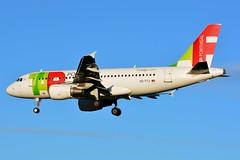 CS-TTJ Airbus A319-111 TAP Air Portugal (BRU/EBBR) (geoffrey.zdcki) Tags: spotting spotter bru brussels belgium brusselsairport bruxelles belgique ebbr aviation avion nikon landing tap tapportugal tapairportugal portugal csttj airbus a319 a319111