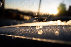Frozen Bubbles (CJ,MJ&AddiesMummy (Katie)) Tags: photography new gorgeous pretty bubbles dark shadow light beautiful beauty winter golden colour color colors colours sunrise ice cold depthoffield depth dof freeze frozen frost bokehgalore bokeh bubble