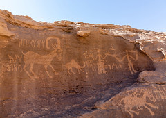 Petroglyphs rock art depicting humans and ibex, Najran Province, Thar, Saudi Arabia (Eric Lafforgue) Tags: ancient ancientcivilisation arabia archaeology art bi'rhima birhima colorpicture cultures day desert emptyquarter engraving famousplace heritage horizontal humanrepresentation incenseroute indigenousculture ksa ksa190840 middleeast nopeople nonurbanscene outdoors petroglyph petroglyphs photography prehistoricrockart rock rockobject rockart rockcarving rubalkhali saudiarabia storytelling thar tourism travel traveldestinations najranprovince