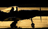 G-DAMB Falco, Glenrothes