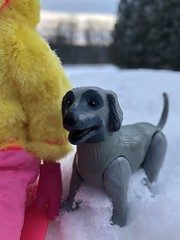 Tagging along (Foxy Belle) Tags: skipper dolll snow outside mod pink yellow snowsuit sled sledding dog barbie vintage hat trees puppy gray poseable beauty hound afghan superstar 1980s
