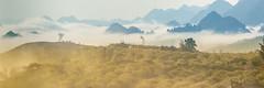 _MG_8342-44.0212.Tân Lập.Mộc Châu.Sơn La (hoanglongphoto) Tags: asia asian vietnam northvietnam northernvietnam northwestvietnam landscape scenery vietnamlandscape vietnamscenery mocchaulandscape morning nature sunny sunnymorning morningsunshine mist earlymorningfog hill ridge ridgehill sky mountain mountains vietnamnature canon tâybắc sơnla mộcchâu tânlập thiênnhiên phongcảnh phongcảnhmộcchâu buổisáng buổisángmộcchâu sươngmù sươngsớm nắng nắngsớm nắngsớmmộcchâu nhữngngọnđồi núi dãynúi bầutrời happyplanet asiafavorites minimalisme minimalistlandscape naturelandscape phongcảnhthiênnhiên hoanglongphoto tree people landscapeandpeople cây phongcảnhcóngười canoneos5dmarkii canonef100400mmf4556lisusm forest theforest earlysunshine panorama 1x3