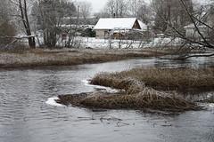 Pirita jõgi (Jaan Keinaste) Tags: pentax k3 pentaxk3 eesti estonia vaskjala piritajõgi jõgi river vesi water talv winter smcpentaxamacro2850