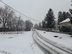 20200119_113953 (Győrsövényház) Tags: győrsövényház gyorsovenyhaz hó ho snow schnee havazás havazas