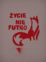 Life, not fur.... (stillunusual) Tags: warsaw warszawa poland polska wwa streetart urbanart urbanwalls wall wallart wallporn graffiti graffitiporn holiday vacation travel travelphotography travelphoto travelphotograph 2019