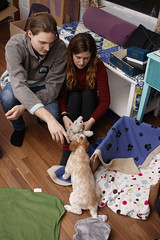 Zora the dog! (Sean McCann (ibycter.com)) Tags: puppy zora dog