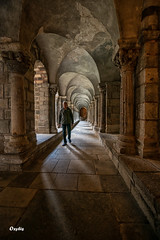 En passant au cloître (oxybis_photos) Tags: architecture cloître église pierres batiment